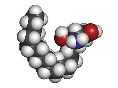 Glycoconjugates