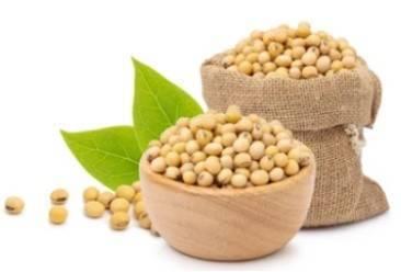 Soybean Polysaccharide Production