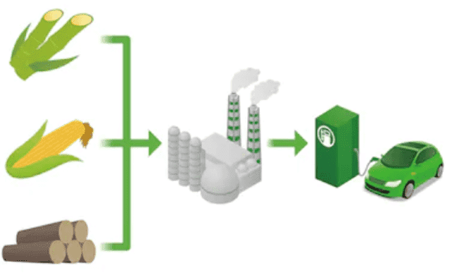 Fig 1. Biofuel conversion