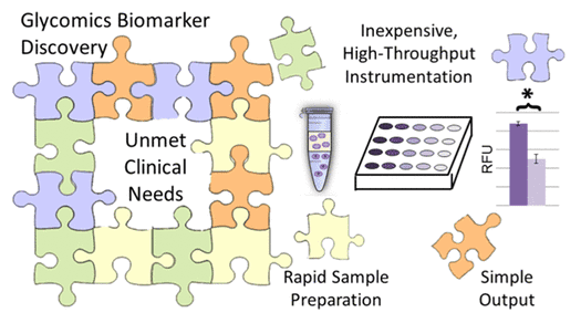 Glycan biomarker discovery unmet clinical needs