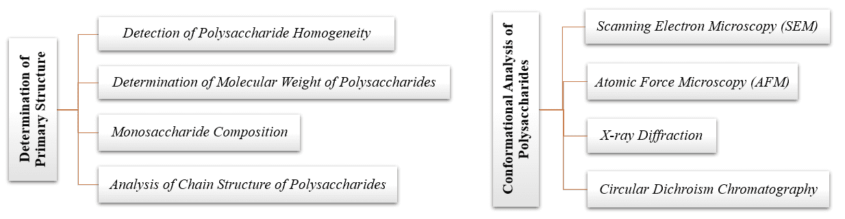 Fig 2. Structural analysis of plant polysaccharides in CD BioGlyco - CD BioGlyco